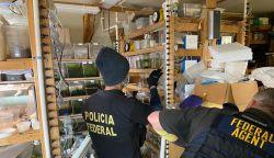 Polícia Federal participa de operação nos EUA de combate a tráfico de animais brasileiros ameaçados de extinção