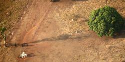 Quais são as questões colocam o agro no centro das polêmicas sobre preservação do meio ambiente?